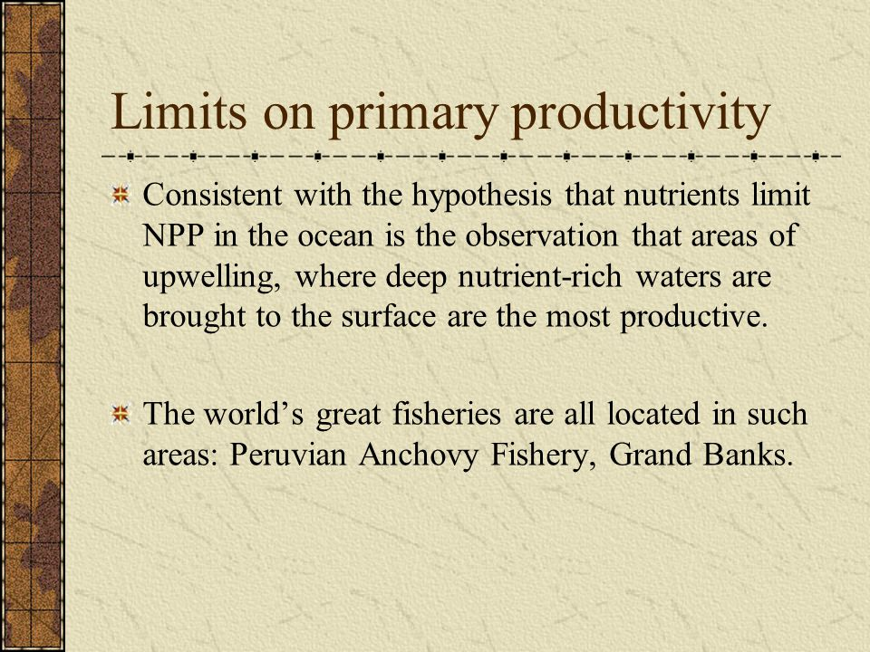 Limits on primary productivity Consistent with the hypothesis that nutrients limit NPP in the ocean is the observation that areas of upwelling, where deep nutrient-rich waters are brought to the surface are the most productive.