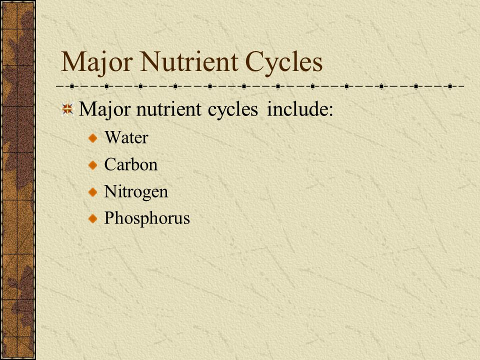Major Nutrient Cycles Major nutrient cycles include: Water Carbon Nitrogen Phosphorus
