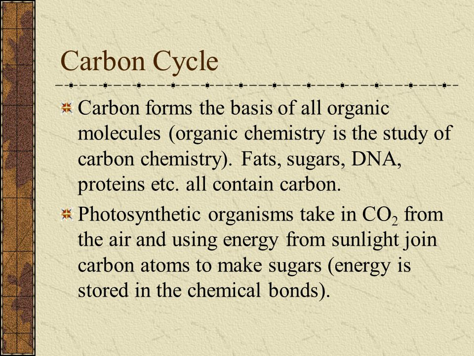 Carbon Cycle Carbon forms the basis of all organic molecules (organic chemistry is the study of carbon chemistry).