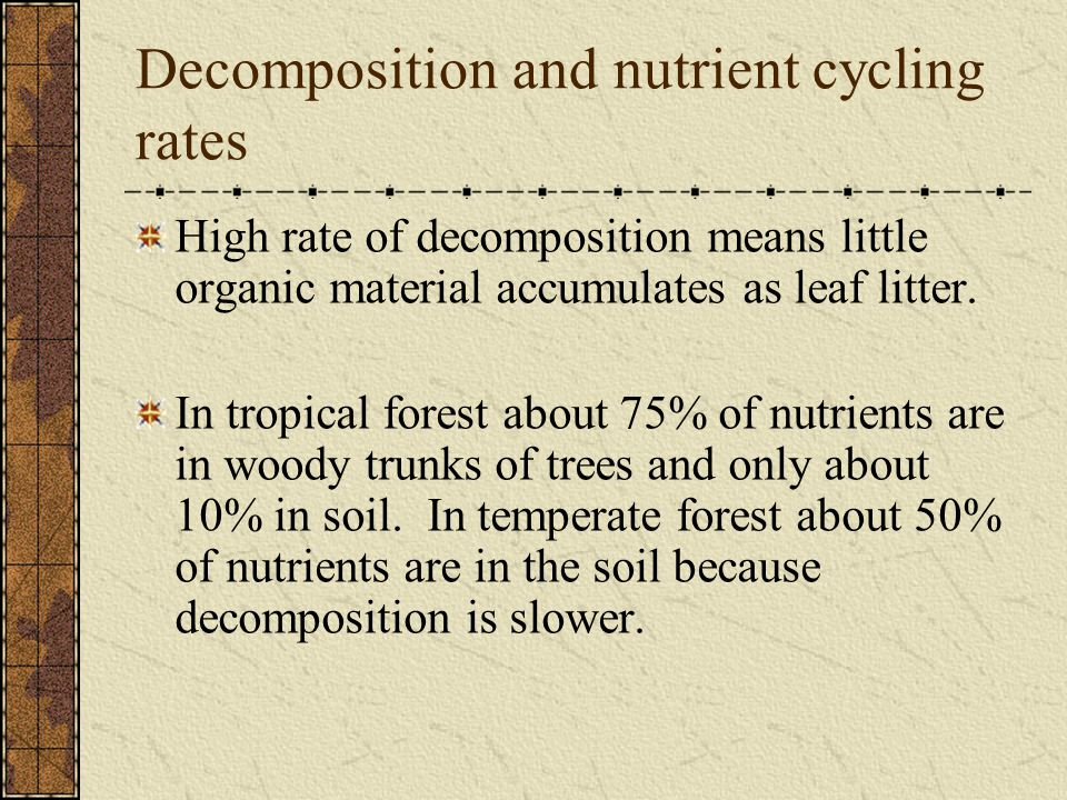 Decomposition and nutrient cycling rates High rate of decomposition means little organic material accumulates as leaf litter. In tropical forest about