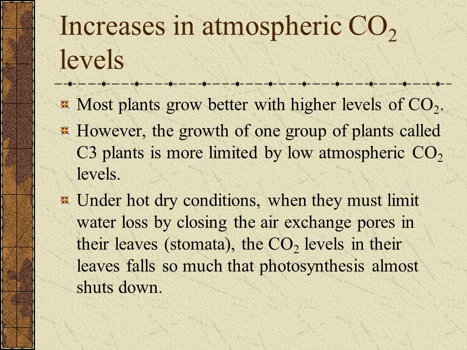 Increases in atmospheric CO 2 levels Most plants grow better with higher levels of CO 2.