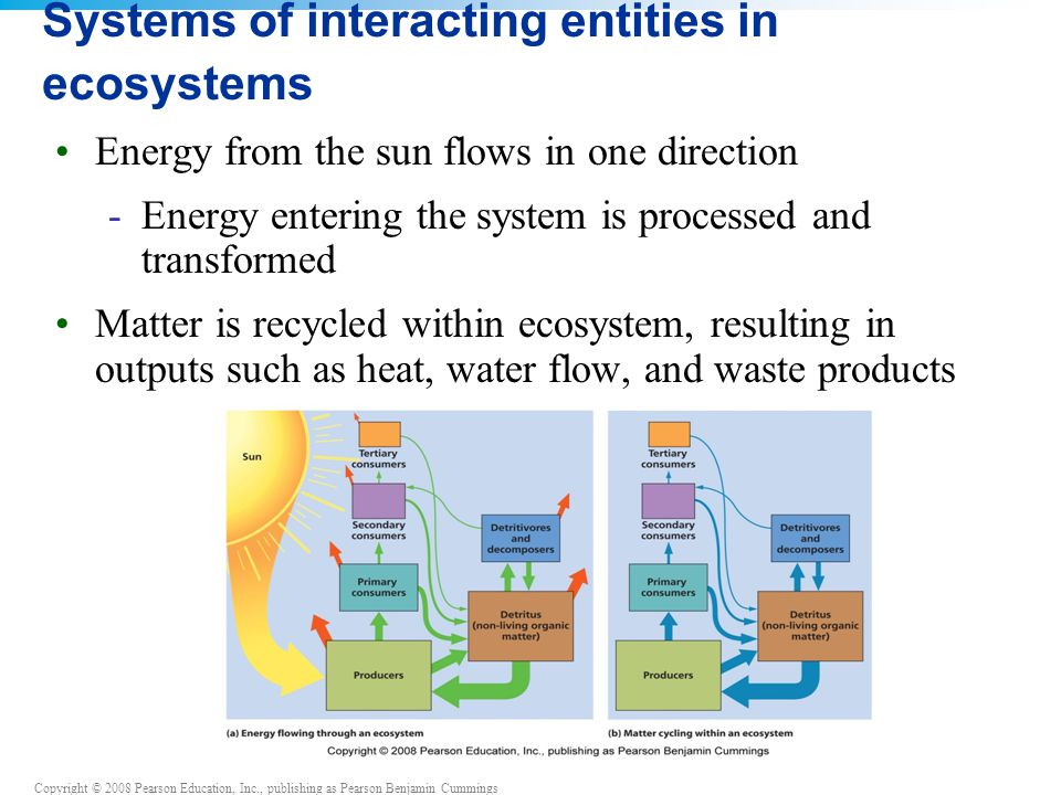 Copyright © 2008 Pearson Education, Inc., publishing as Pearson Benjamin Cummings Systems of interacting entities in ecosystems Energy from the sun flows in one direction -Energy entering the system is processed and transformed Matter is recycled within ecosystem, resulting in outputs such as heat, water flow, and waste products