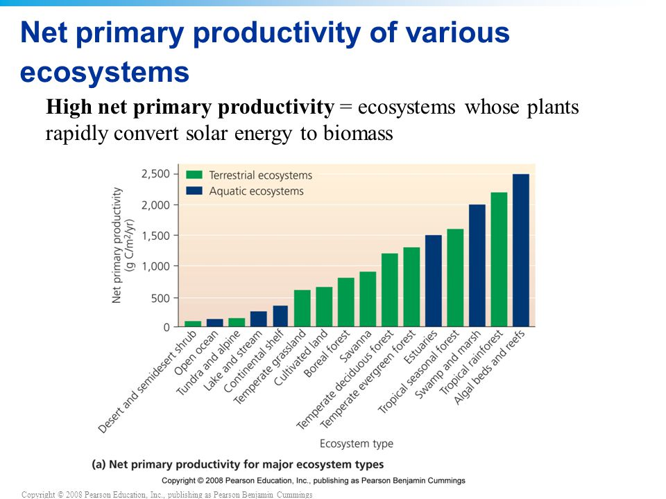 Copyright © 2008 Pearson Education, Inc., publishing as Pearson Benjamin Cummings Net primary productivity of various ecosystems High net primary productivity = ecosystems whose plants rapidly convert solar energy to biomass