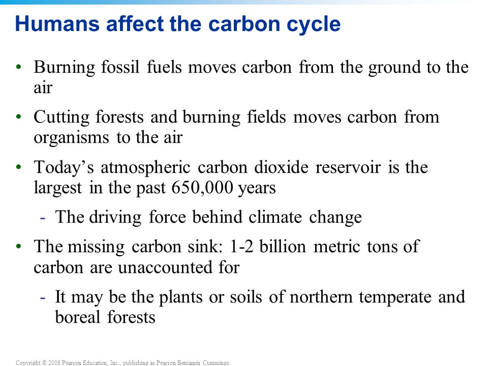 Copyright © 2008 Pearson Education, Inc., publishing as Pearson Benjamin Cummings Humans affect the carbon cycle Burning fossil fuels moves carbon from the ground to the air Cutting forests and burning fields moves carbon from organisms to the air Today's atmospheric carbon dioxide reservoir is the largest in the past 650,000 years -The driving force behind climate change The missing carbon sink: 1-2 billion metric tons of carbon are unaccounted for -It may be the plants or soils of northern temperate and boreal forests