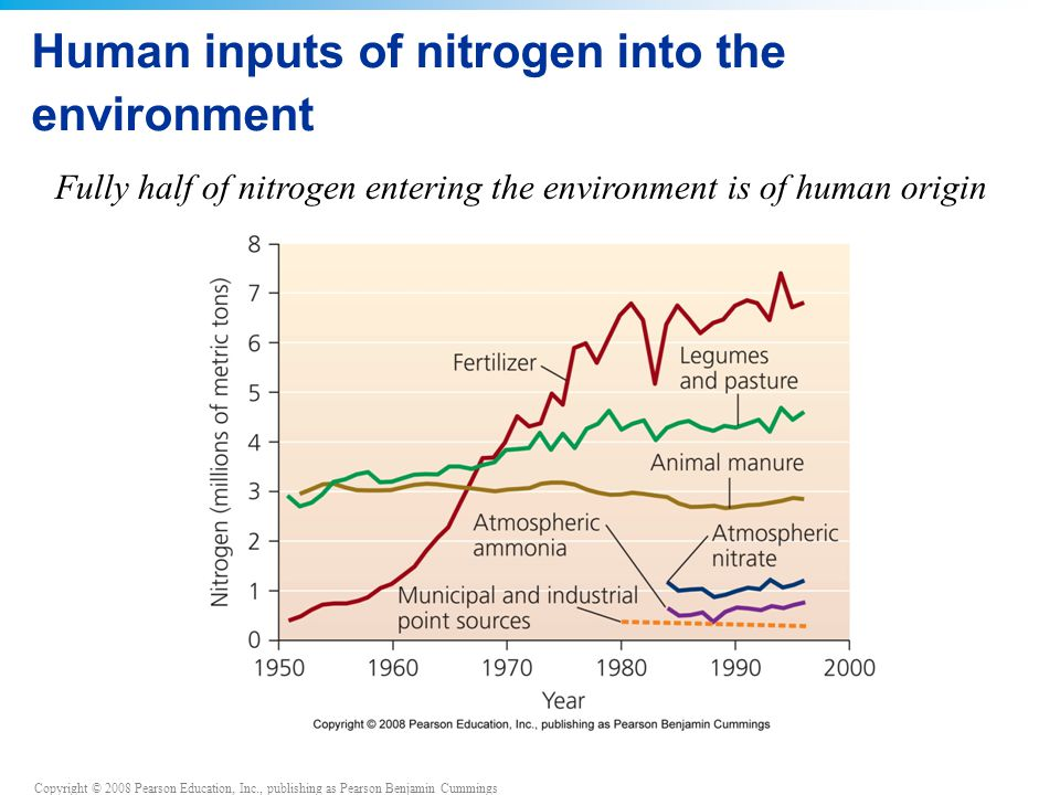 Copyright © 2008 Pearson Education, Inc., publishing as Pearson Benjamin Cummings Human inputs of nitrogen into the environment Fully half of nitrogen entering the environment is of human origin