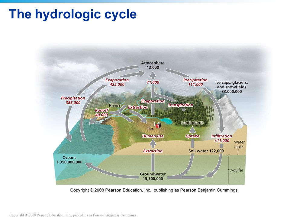Copyright © 2008 Pearson Education, Inc., publishing as Pearson Benjamin Cummings The hydrologic cycle