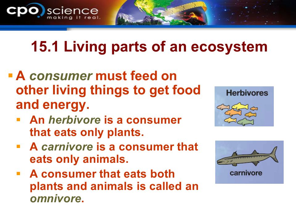 15.1 Living parts of an ecosystem  A consumer must feed on other living things to get food and energy.