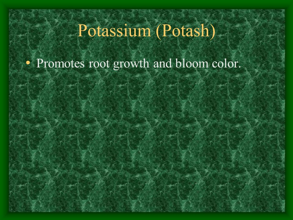 Potassium (Potash) Promotes root growth and bloom color.