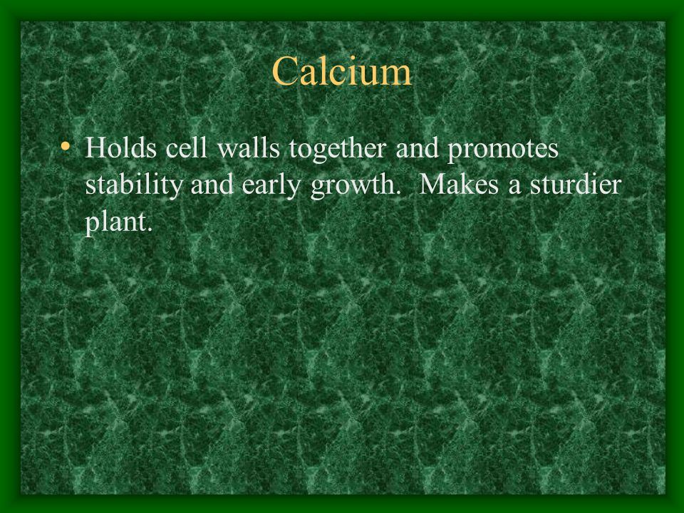 Calcium Holds cell walls together and promotes stability and early growth. Makes a sturdier plant.