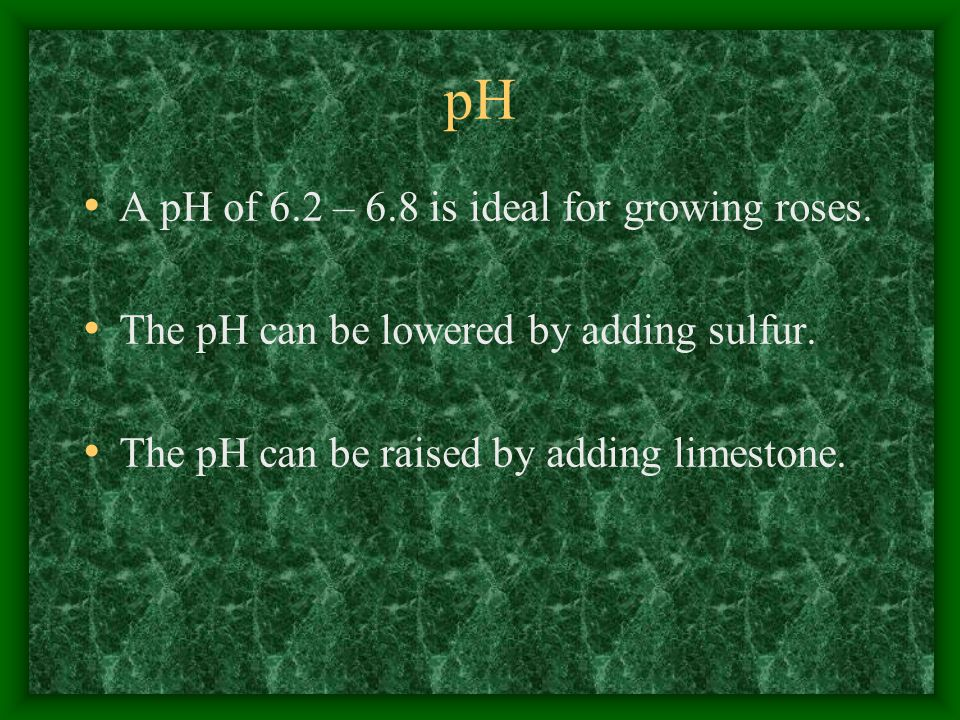 pH A pH of 6.2 – 6.8 is ideal for growing roses. The pH can be lowered by adding sulfur.