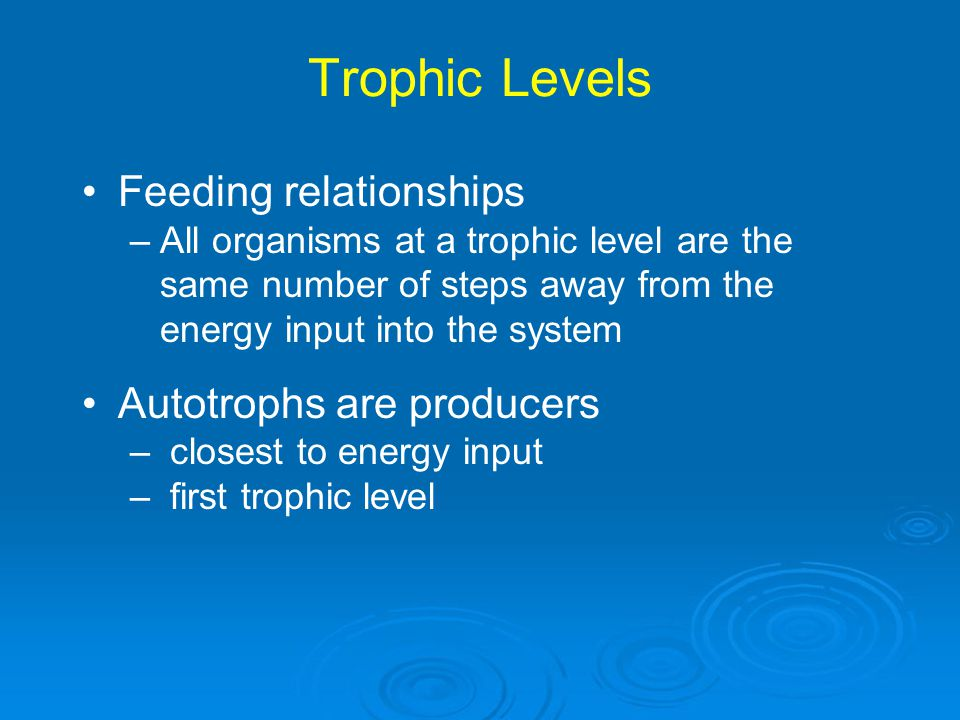 Trophic Levels 5th 4th 3rd 2nd 1st Fourth-level consumers (heterotrophs): Top carnivores, parasites, detritivores, decomposers Third-level consumers (heterotrophs): Carnivores, parasites, detritivores, decomposers Second-level consumers (heterotrophs): Carnivores, parasites, detritivores, decomposers First-level consumers (heterotrophs): Herbivores, parasites, detritivores, decomposers Primary producers (autotrophs): Photoautotrophs, chemoautotrophs