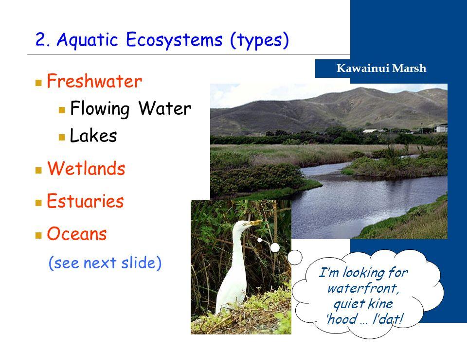 2. Aquatic Ecosystems (types) Freshwater Flowing Water Lakes Wetlands Estuaries Oceans (see next slide) Kawainui Marsh I'm looking for waterfront, qui