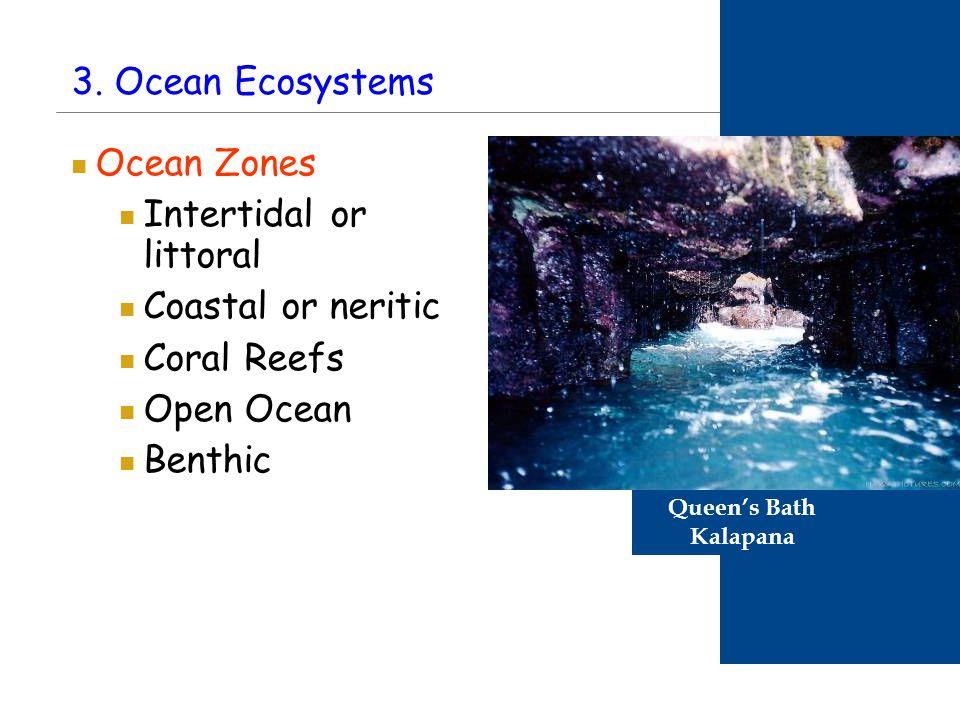 3. Ocean Ecosystems Ocean Zones Intertidal or littoral Coastal or neritic Coral Reefs Open Ocean Benthic Queen's Bath Kalapana