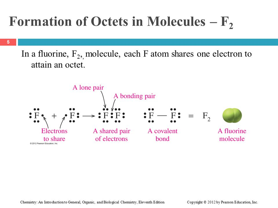 Formation of Octets in Molecules – F 2 In a fluorine, F 2,, molecule, each F atom shares one electron to attain an octet.