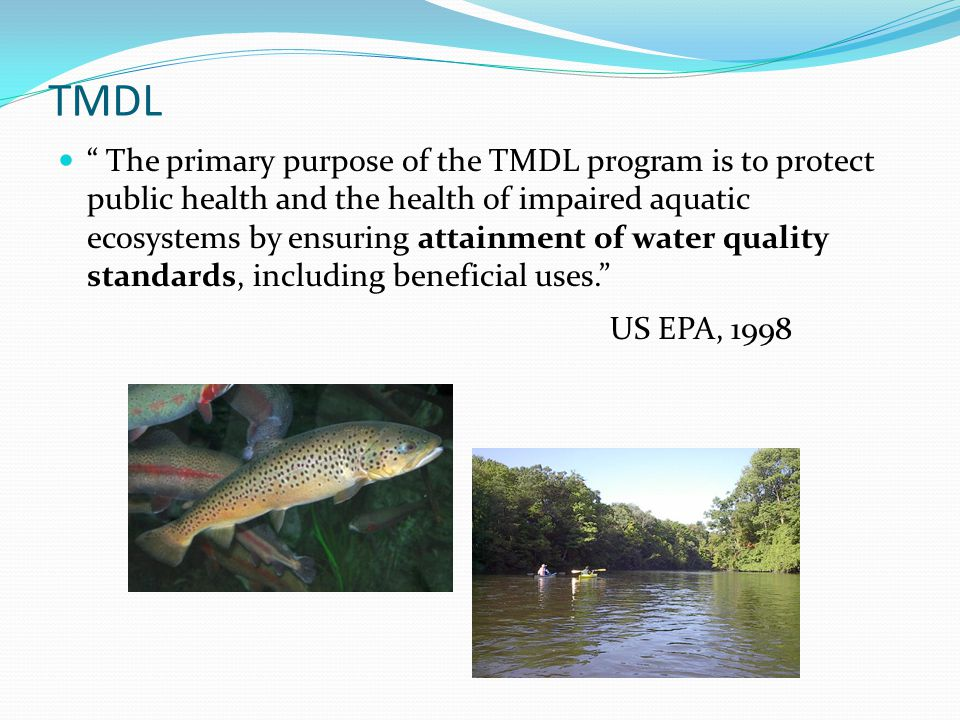 What is a TMDL? Total Maximum Daily Load is an estimate of the maximum amount of a pollutant that a water body can receive and still meet water qualit
