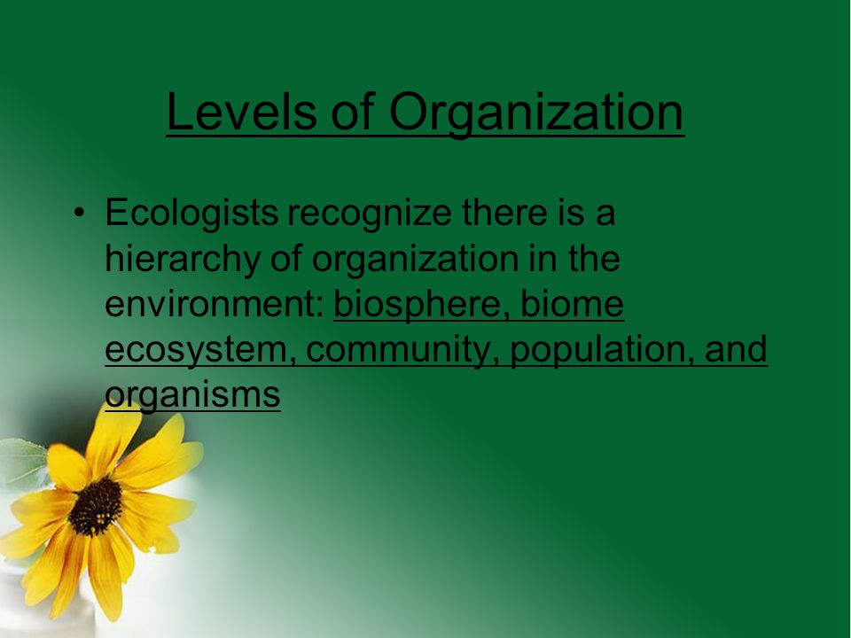Why do we study ecology? We live in the natural world and use its resources (water, space,food, etc) The natural world effects our lives (weather, fir