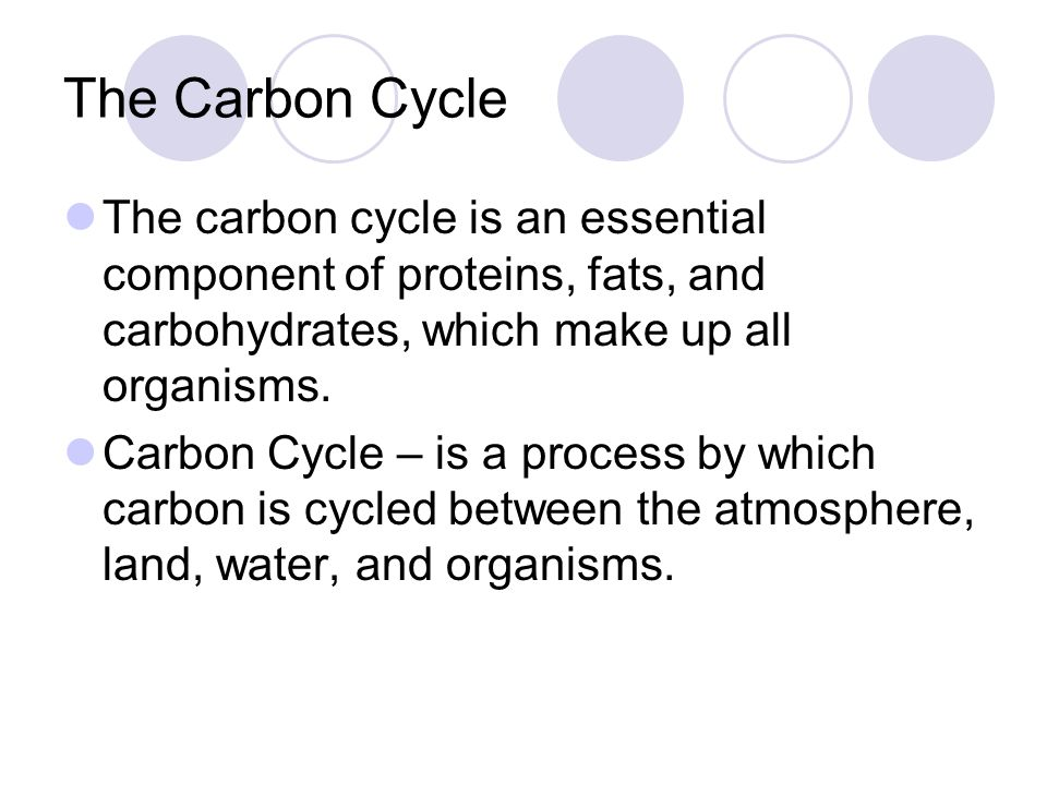 The Carbon Cycle The carbon cycle is an essential component of proteins, fats, and carbohydrates, which make up all organisms.