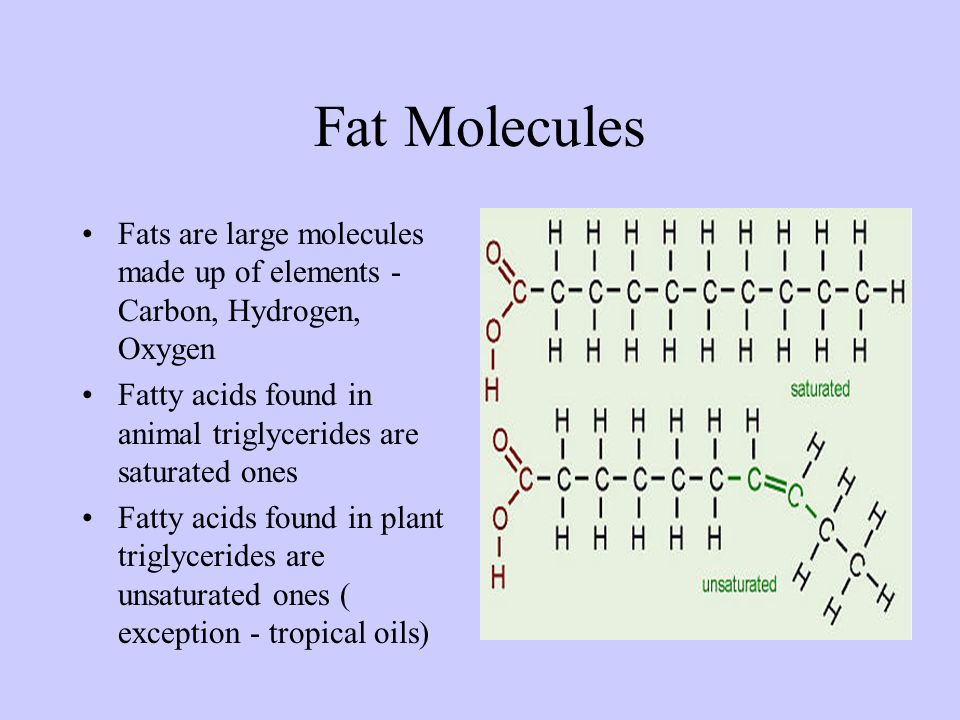 Fats Important energy source –Lipid family which includes fats and oils Hydrogenation: adds hydrogen atoms to unsaturated fatty acids (liquid) turning