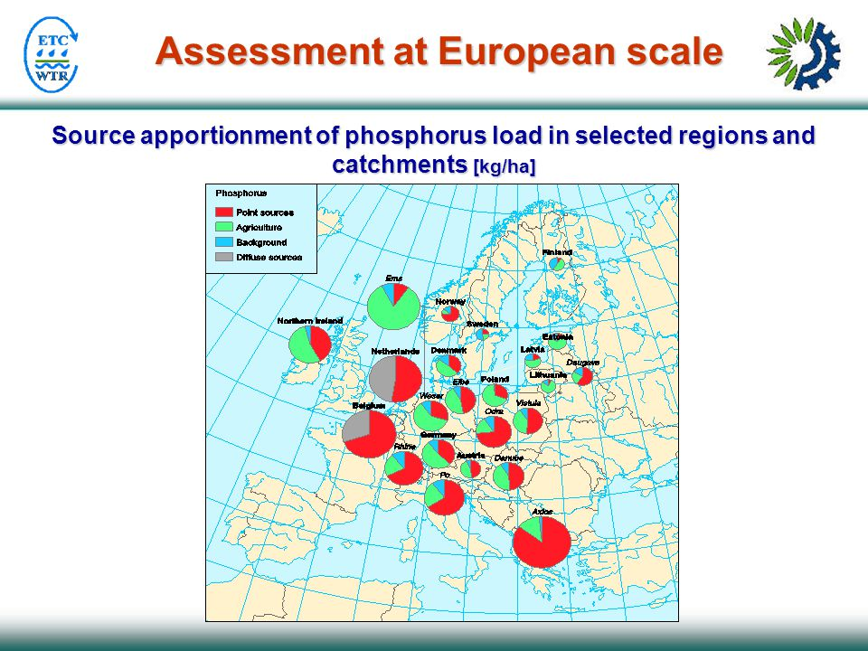 Source apportionment of phosphorus load in selected regions and catchments [kg/ha] Assessment at European scale