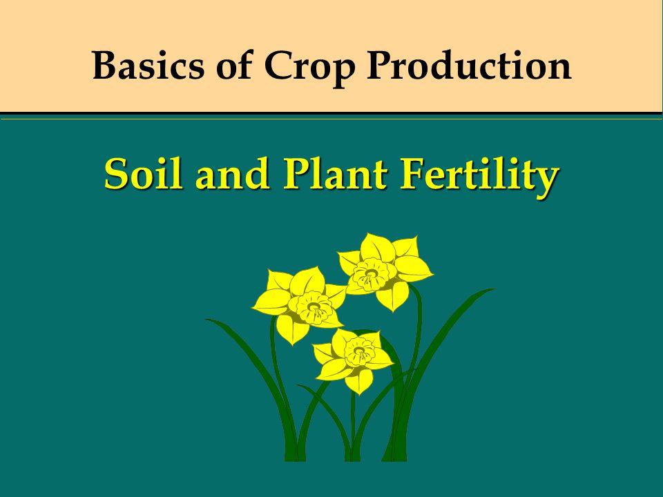Basics of Crop Production Soil and Plant Fertility