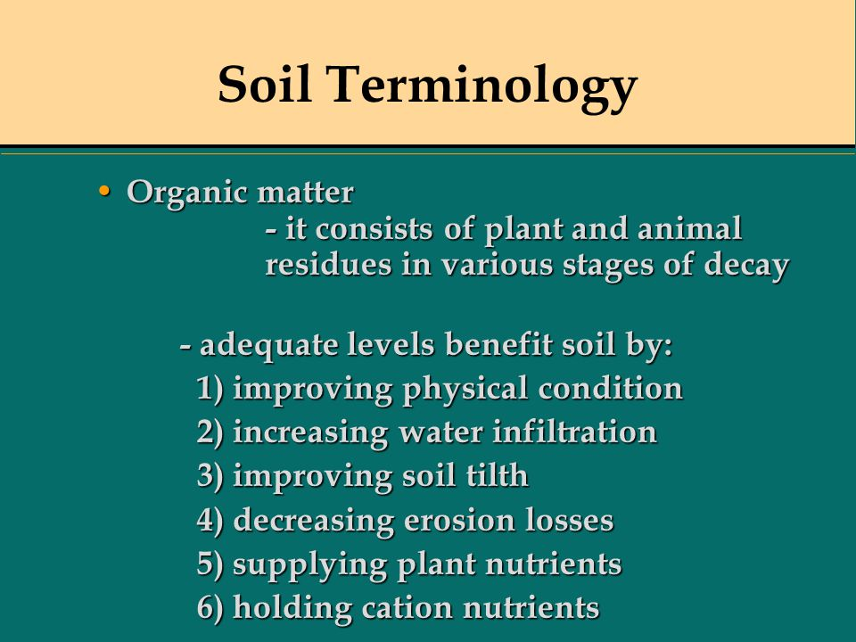 Soil Terminology Organic matter - it consists of plant and animal residues in various stages of decay Organic matter - it consists of plant and animal