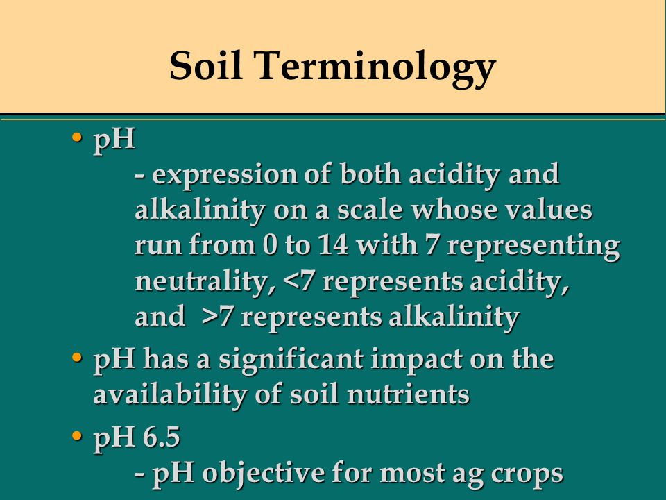 Soil Terminology pH - expression of both acidity and alkalinity on a scale whose values run from 0 to 14 with 7 representing neutrality, 7 represents