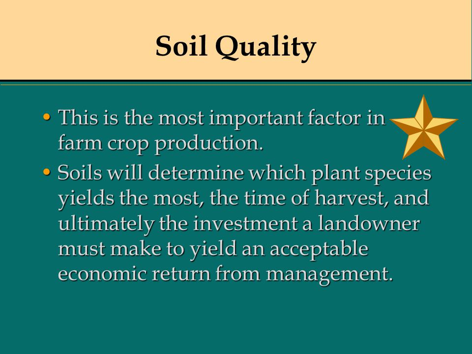 Soil Quality This is the most important factor in farm crop production.This is the most important factor in farm crop production. Soils will determine
