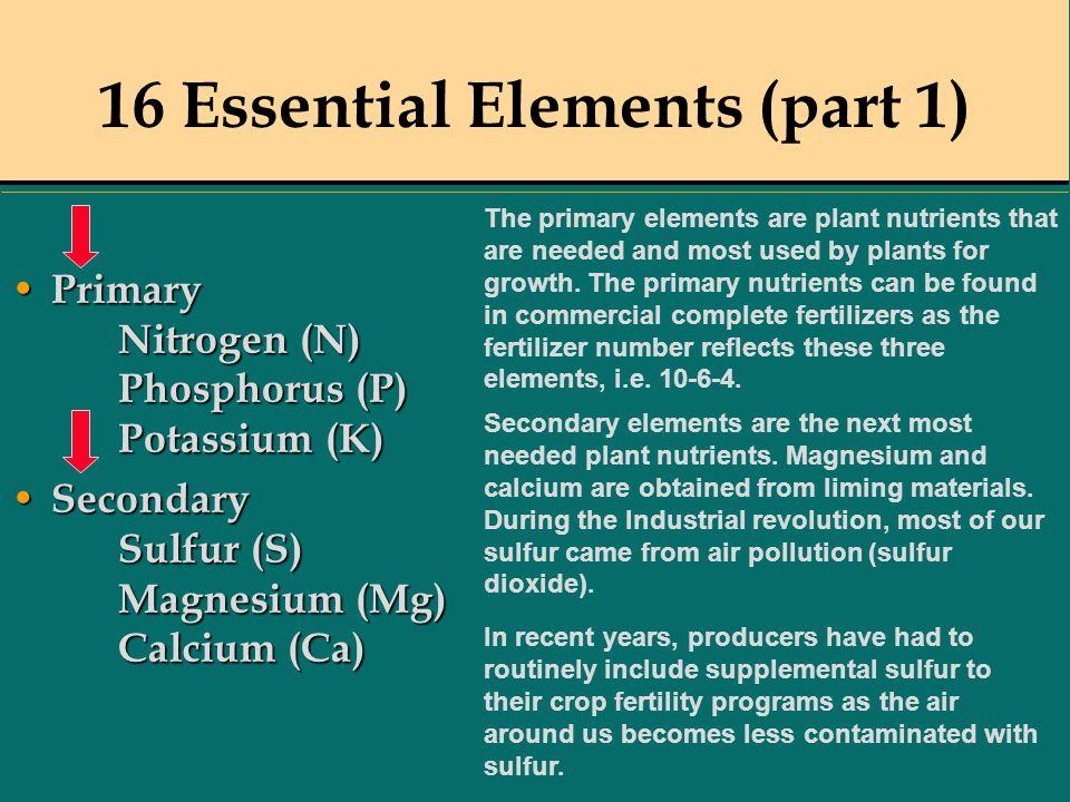 16 Essential Elements (part 1) Primary Nitrogen (N) Phosphorus (P) Potassium (K) Primary Nitrogen (N) Phosphorus (P) Potassium (K) Secondary Sulfur (S