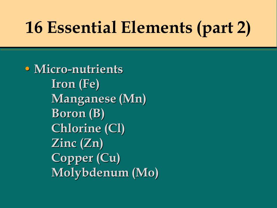 16 Essential Elements (part 2) Micro-nutrients Iron (Fe) Manganese (Mn) Boron (B) Chlorine (Cl) Zinc (Zn) Copper (Cu) Molybdenum (Mo) Micro-nutrients