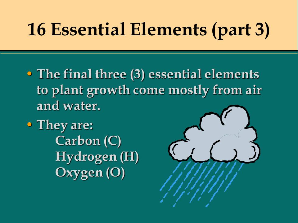 16 Essential Elements (part 3) The final three (3) essential elements to plant growth come mostly from air and water. The final three (3) essential el