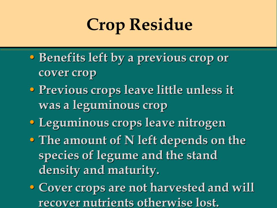 Crop Residue Benefits left by a previous crop or cover crop Benefits left by a previous crop or cover crop Previous crops leave little unless it was a