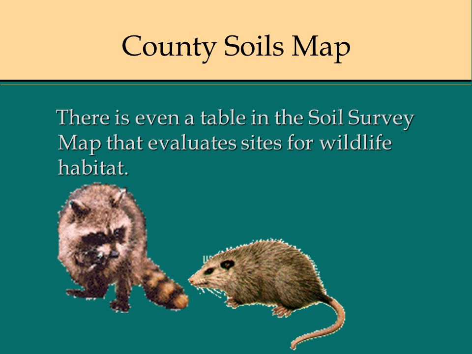 County Soils Map There is even a table in the Soil Survey Map that evaluates sites for wildlife habitat. There is even a table in the Soil Survey Map