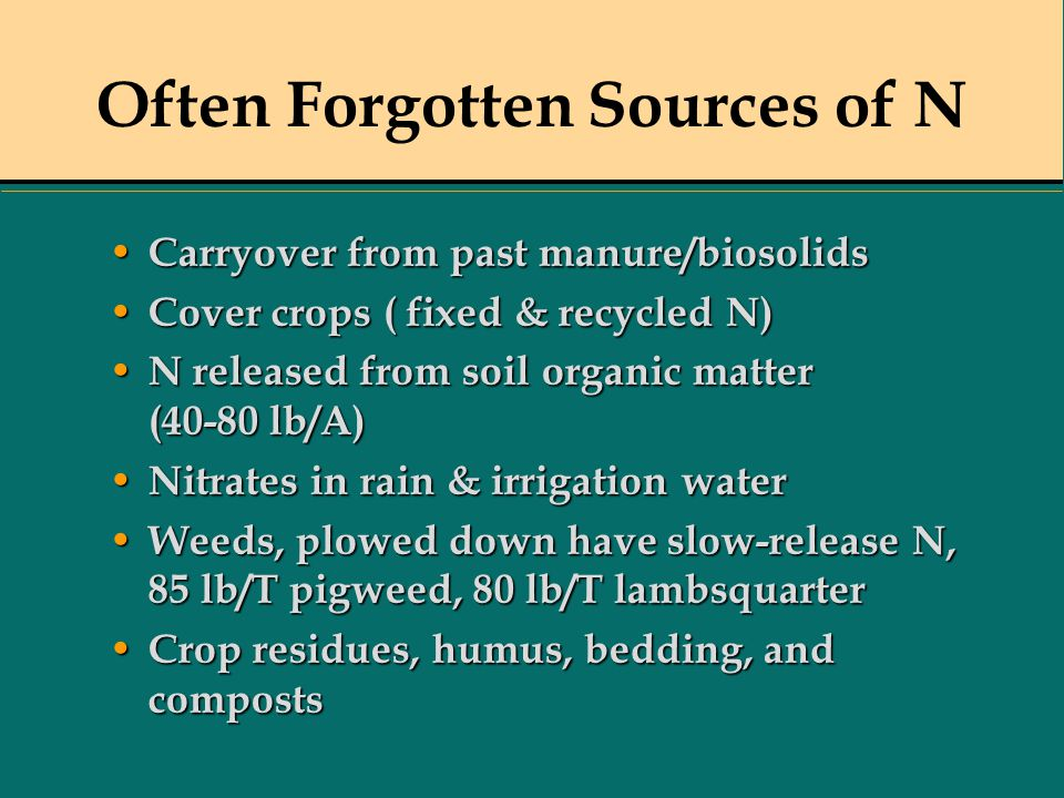 Often Forgotten Sources of N Carryover from past manure/biosolids Carryover from past manure/biosolids Cover crops ( fixed & recycled N) Cover crops (
