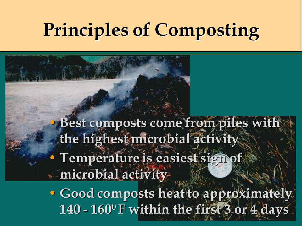 Principles of Composting Best composts come from piles with the highest microbial activity Best composts come from piles with the highest microbial ac