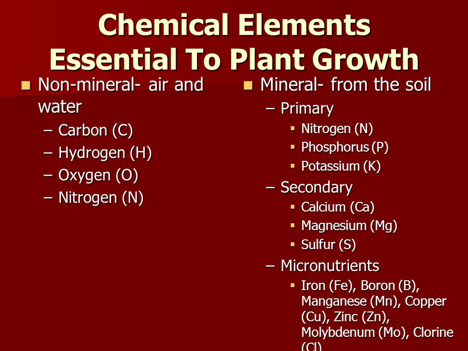 Chemical Elements Essential To Plant Growth Non-mineral- air and water Non-mineral- air and water –Carbon (C) –Hydrogen (H) –Oxygen (O) –Nitrogen (N) Mineral- from the soil Mineral- from the soil –Primary  Nitrogen (N)  Phosphorus (P)  Potassium (K) –Secondary  Calcium (Ca)  Magnesium (Mg)  Sulfur (S) –Micronutrients  Iron (Fe), Boron (B), Manganese (Mn), Copper (Cu), Zinc (Zn), Molybdenum (Mo), Clorine (Cl)