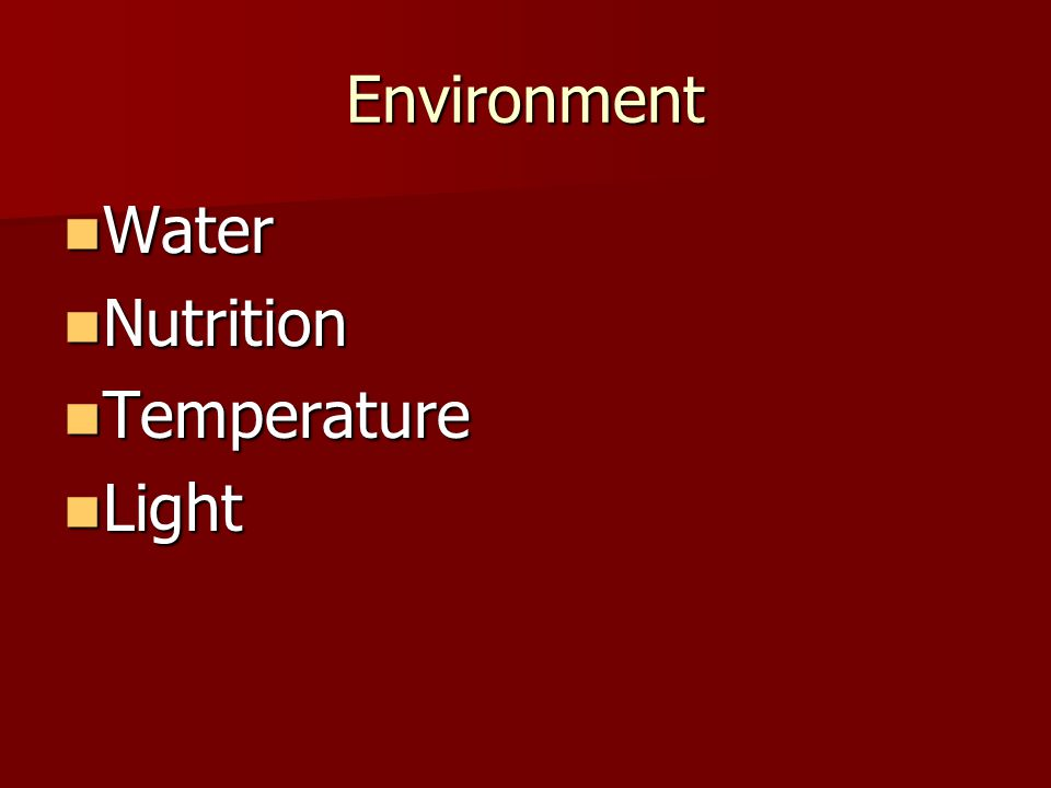 Environment Water Water Nutrition Nutrition Temperature Temperature Light Light