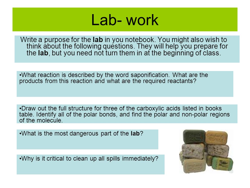 Lab- work Write a purpose for the lab in you notebook. You might also wish to think about the following questions. They will help you prepare for the