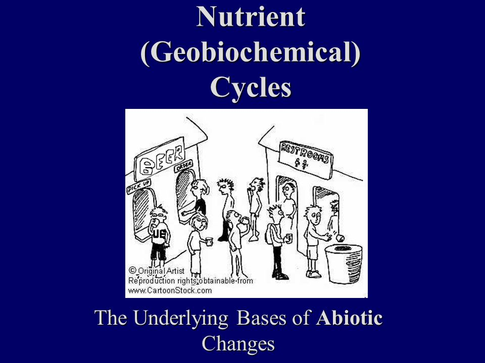 Nutrient (Geobiochemical) Cycles The Underlying Bases of Abiotic Changes