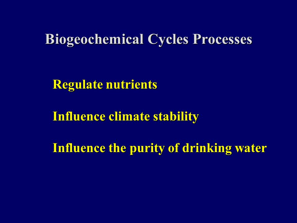 Biogeochemical Cycles Processes Regulate nutrients Influence climate stability Influence the purity of drinking water