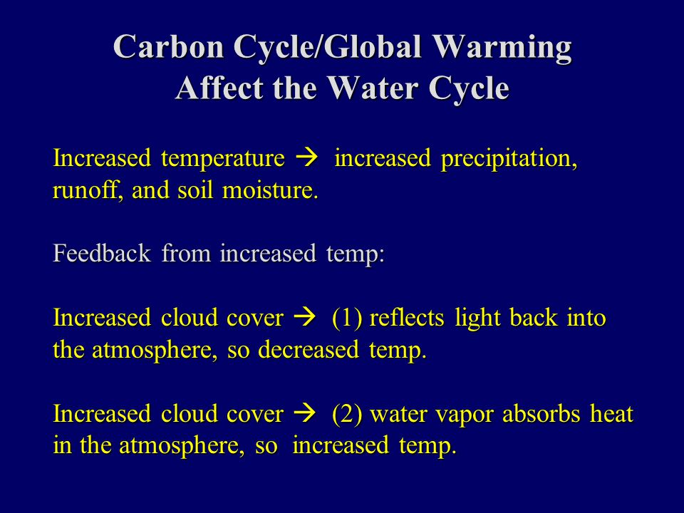 Carbon Cycle/Global Warming Affect the Water Cycle Increased temperature  increased precipitation, runoff, and soil moisture.