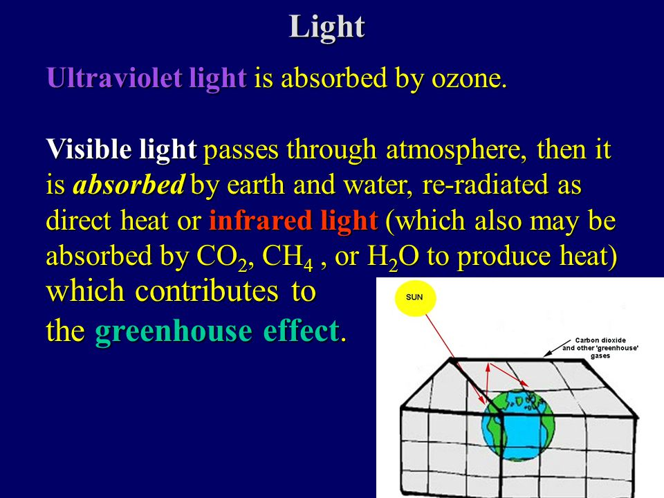 Light Ultraviolet lightis absorbed by ozone. Ultraviolet light is absorbed by ozone.