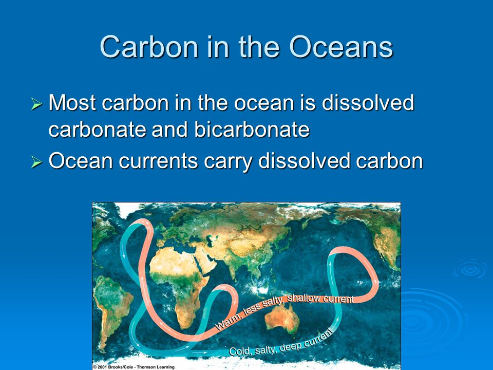Carbon in the Oceans  Most carbon in the ocean is dissolved carbonate and bicarbonate  Ocean currents carry dissolved carbon