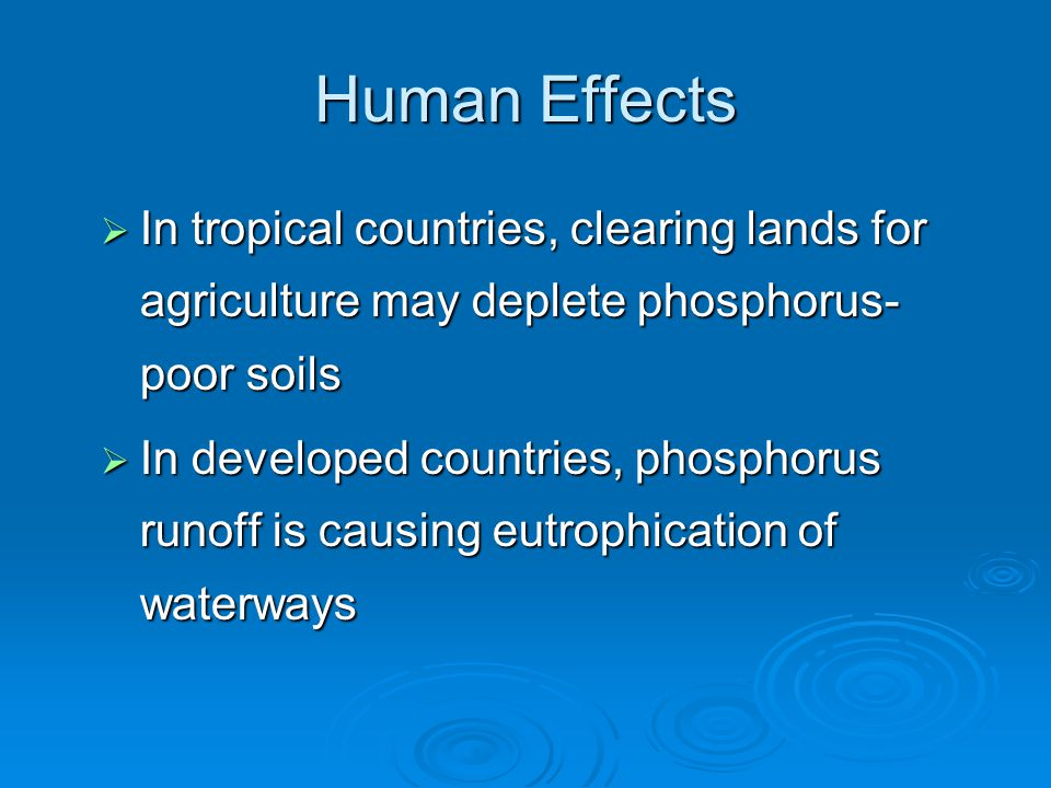 Human Effects  In tropical countries, clearing lands for agriculture may deplete phosphorus- poor soils  In developed countries, phosphorus runoff is causing eutrophication of waterways