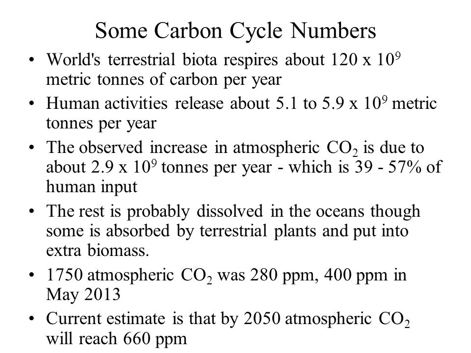 Some Carbon Cycle Numbers World s terrestrial biota respires about 120 x 10 9 metric tonnes of carbon per year Human activities release about 5.1 to 5.9 x 10 9 metric tonnes per year The observed increase in atmospheric CO 2 is due to about 2.9 x 10 9 tonnes per year - which is 39 - 57% of human input The rest is probably dissolved in the oceans though some is absorbed by terrestrial plants and put into extra biomass.
