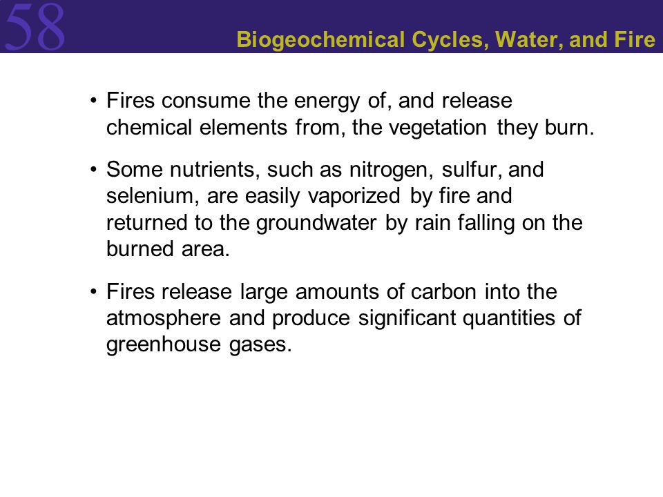 58 Biogeochemical Cycles, Water, and Fire Fires consume the energy of, and release chemical elements from, the vegetation they burn. Some nutrients, s