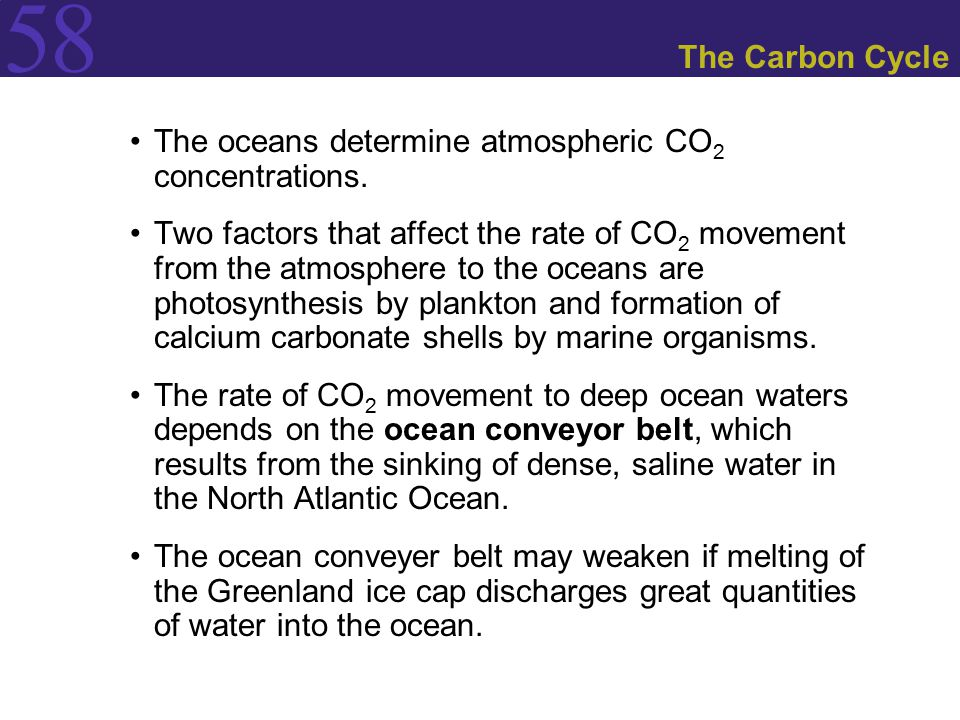 58 The Carbon Cycle The oceans determine atmospheric CO 2 concentrations. Two factors that affect the rate of CO 2 movement from the atmosphere to the
