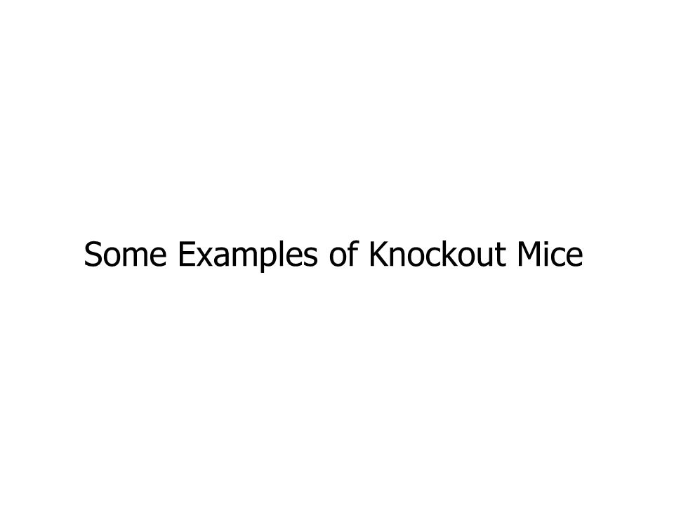 Some Examples of Knockout Mice