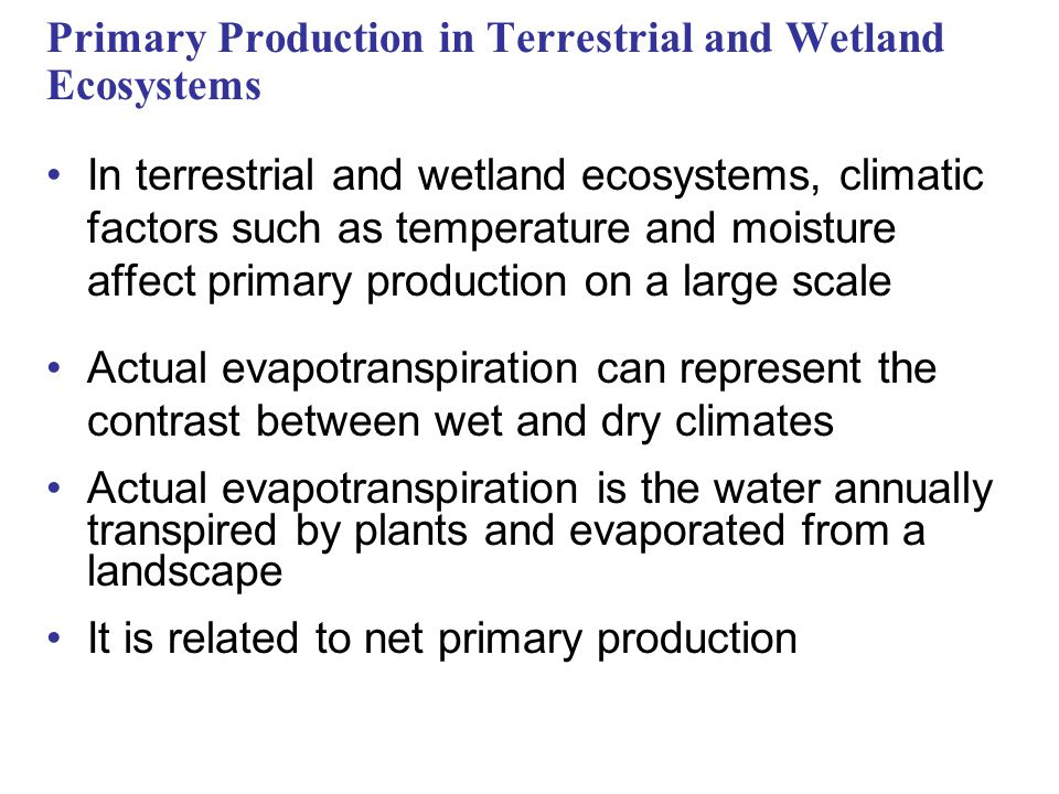 Primary Production in Terrestrial and Wetland Ecosystems In terrestrial and wetland ecosystems, climatic factors such as temperature and moisture affect primary production on a large scale Actual evapotranspiration can represent the contrast between wet and dry climates Actual evapotranspiration is the water annually transpired by plants and evaporated from a landscape It is related to net primary production