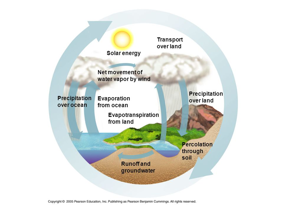 Transport over land Precipitation over land Evaporation from ocean Precipitation over ocean Net movement of water vapor by wind Solar energy Evapotran