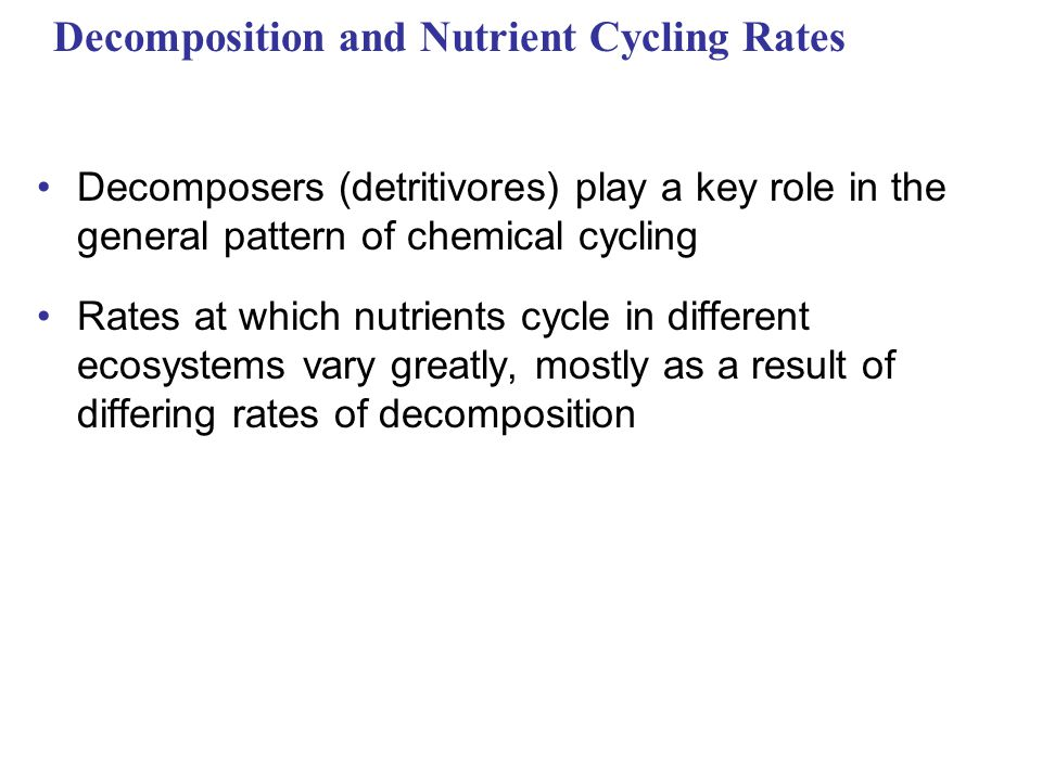 Decomposition and Nutrient Cycling Rates Decomposers (detritivores) play a key role in the general pattern of chemical cycling Rates at which nutrients cycle in different ecosystems vary greatly, mostly as a result of differing rates of decomposition